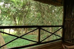 Terrassen i Moholoholo