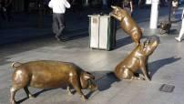 Grisar på Rundle Mall