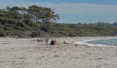 Jervis beach