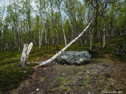 Stock och sten