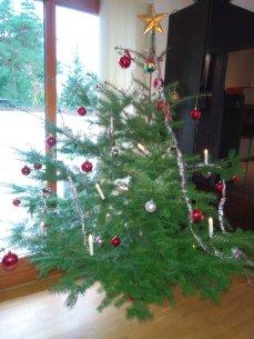 Juleträd