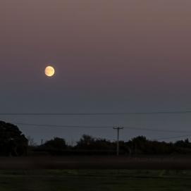 I månens sken genom Holland